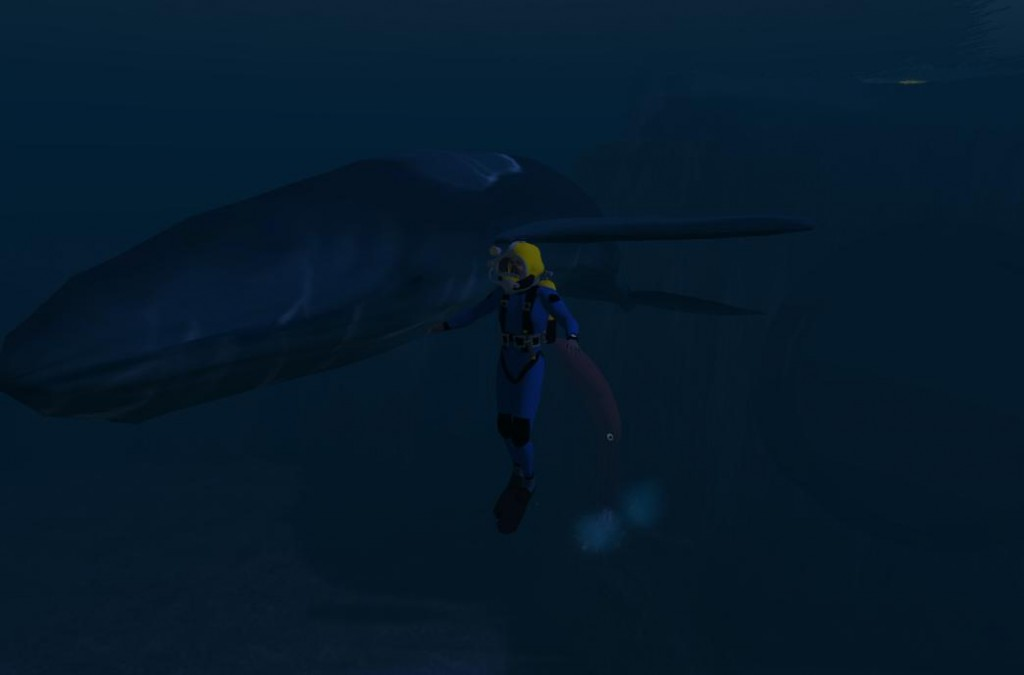 2014-10-28-RGU-Diver-with-Whale