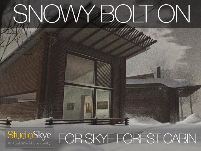 Skye-Forest-Cabin-Snowy-2
