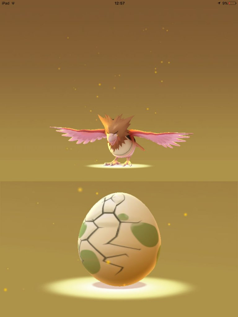 2016-07-29-Pokemon-Egg-Hatch