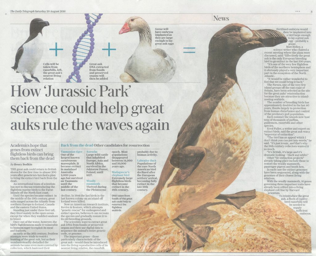 2016-08-20-Daily-Telegraph-Page-3-Great-Auk